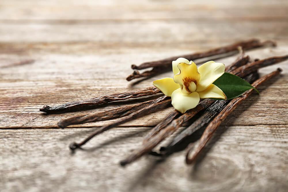 バニラの花とバニラビーンズ